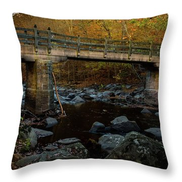 Rock Creek Park Bridge Throw Pillow