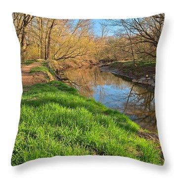 Rock Creek Spring Throw Pillow by Nicolas Raymond