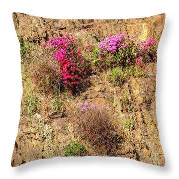 Rock Cutting 1 Throw Pillow by Werner Padarin