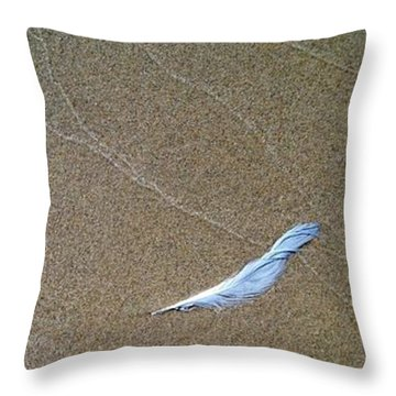 Rock Feather Glass Throw Pillow