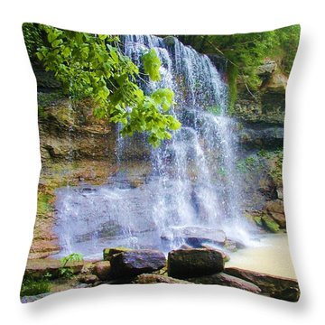 Throw Pillow featuring the photograph Rock Glen by Rodney Campbell