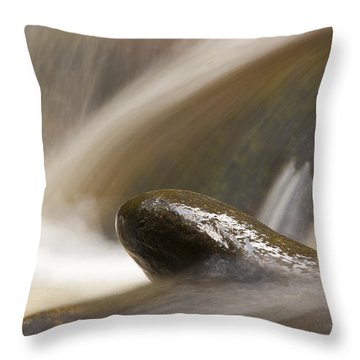 Rock Steady Throw Pillow