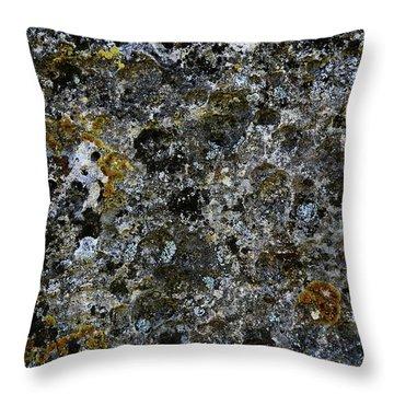 Rock Lichen Surface Throw Pillow