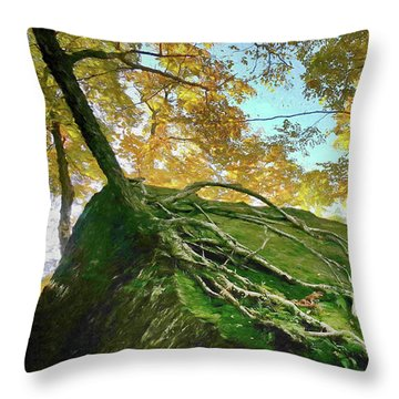 Throw Pillow featuring the photograph Rock Of Ages by Jeff Folger