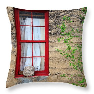 Throw Pillow featuring the photograph Rock On A Red Window by James Eddy