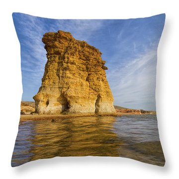 Rock Pillar At Wilson Lake Throw Pillow