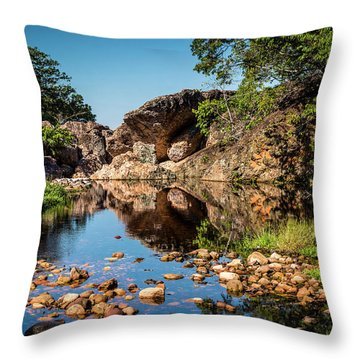 Rock Pool Throw Pillow by Lana Enderle