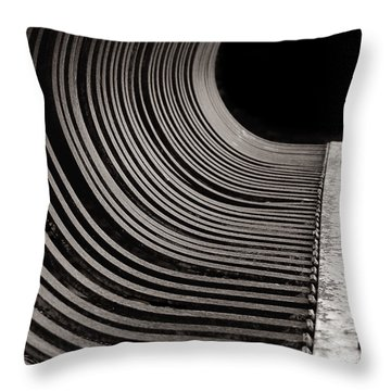 Throw Pillow featuring the photograph Rock Rake by Susan Capuano