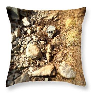Rock Skull Throw Pillow