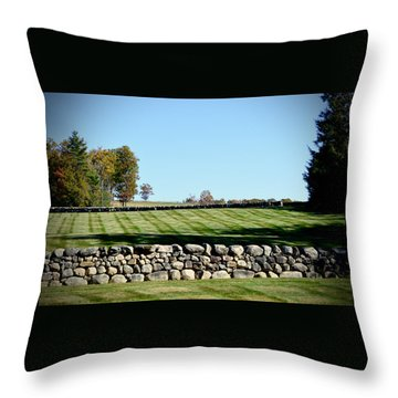 Rock Wall Lawn Throw Pillow