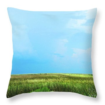 Rockefeller Wma Throw Pillow by Lizi Beard-Ward