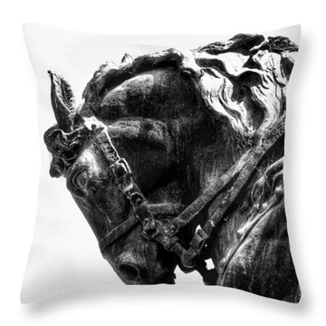 Throw Pillow featuring the photograph Rocking Horse by AJ Schibig