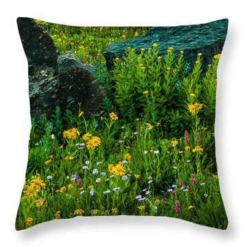 Throw Pillow featuring the photograph Rocks Among The Flowers by Jay Stockhaus