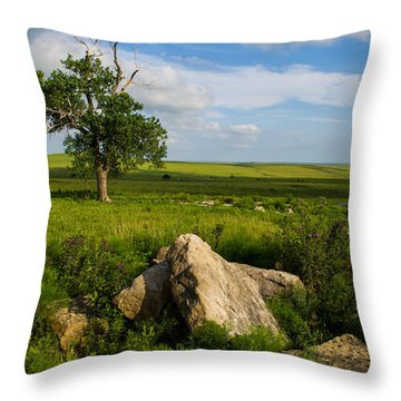 Throw Pillow featuring the photograph Rocks And Cottonwood 1 by Jeff Phillippi