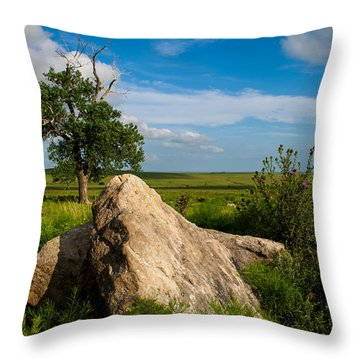 Throw Pillow featuring the photograph Rocks And Cottonwood 2 by Jeff Phillippi