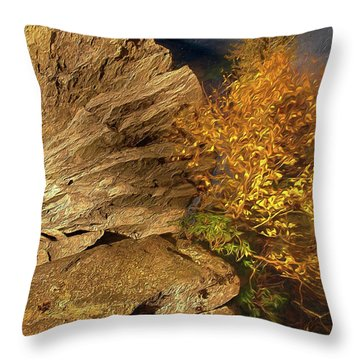 Throw Pillow featuring the painting Rocks And Fall Colors At Night In The Blue Ridge Ap by Dan Carmichael