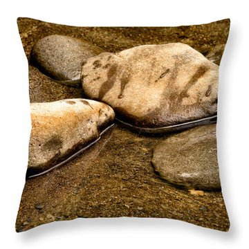 Rocks At Rest Throw Pillow by Christopher Holmes
