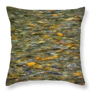 Rocks Under Water Throw Pillow