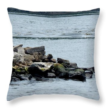 Rocks Wingdam And River Throw Pillow
