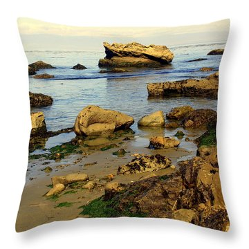 Rocky Beach Throw Pillow by Marty Koch