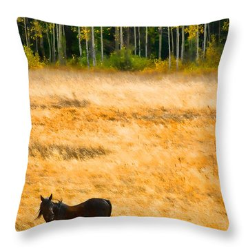 Rocky Mountain Autumn Graze Throw Pillow by James BO  Insogna
