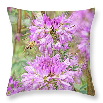 Throw Pillow featuring the photograph Rocky Mountain Bee Plant by Jennie Marie Schell