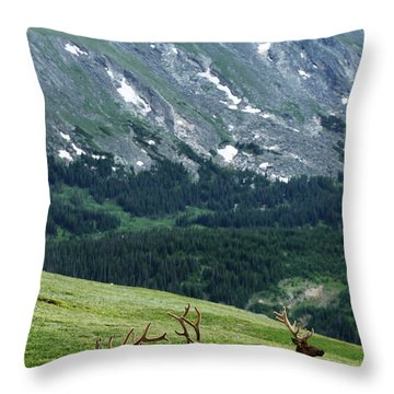 Throw Pillow featuring the photograph Rocky Mountain Elk 5 by Marie Leslie