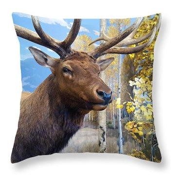 Throw Pillow featuring the photograph Rocky Mountain Elk by Karon Melillo DeVega