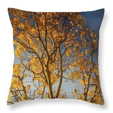 Rocky Mountain Fall Colors Throw Pillow