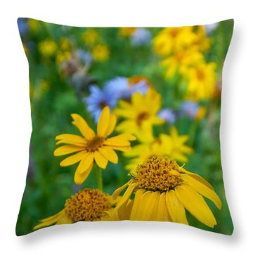 Throw Pillow featuring the photograph Rocky Mountain Wildflowers by Cascade Colors
