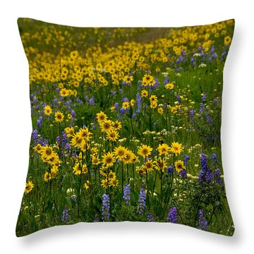 Rocky Mountain Wildflowers Throw Pillow