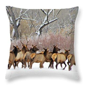 Rocky Mountain Winter Elk Throw Pillow