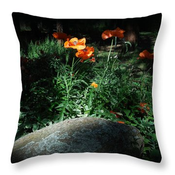 Rocky Mt. Poppies  Throw Pillow