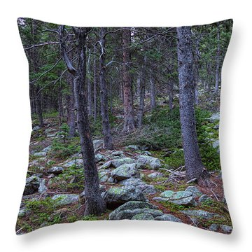 Throw Pillow featuring the photograph Rocky Nature Landscape by James BO Insogna
