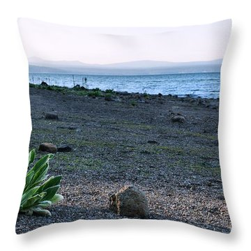 Rocky Point Beach Throw Pillow
