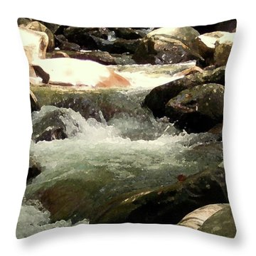 Throw Pillow featuring the mixed media Rocky Stream 4 by Desiree Paquette