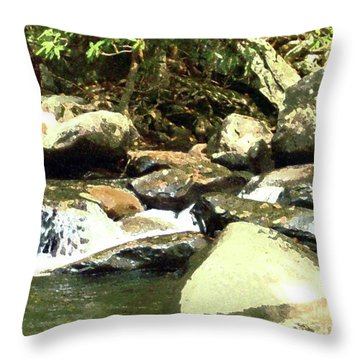 Throw Pillow featuring the mixed media Rocky Stream 5 by Desiree Paquette