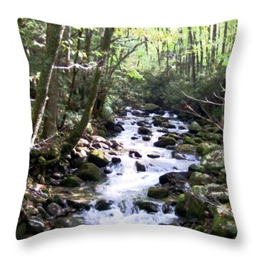 Throw Pillow featuring the mixed media Rocky Stream 6 by Desiree Paquette