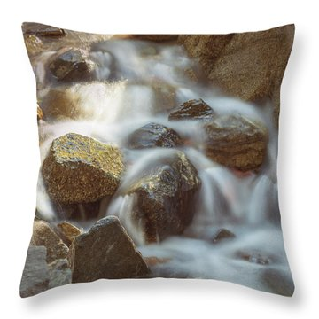 Rocky Water Throw Pillow
