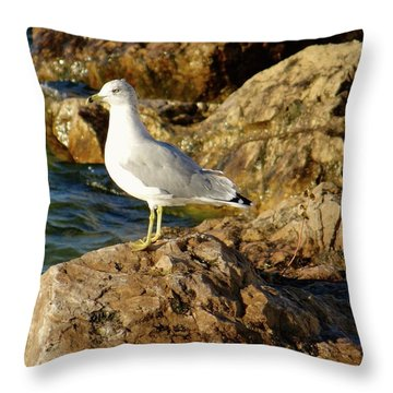 Rocky Waters Throw Pillow