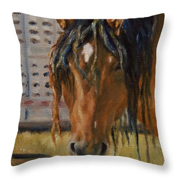 Rodeo Horse Throw Pillow
