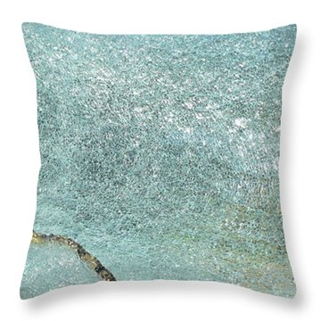 Rogue Wave Throw Pillow by Rick Silas