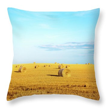 Throw Pillow featuring the photograph Rolled Hay by Onyonet  Photo Studios