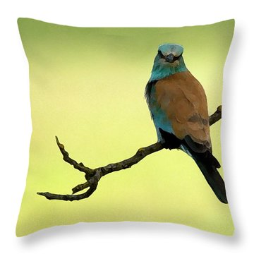 Roller  Throw Pillow