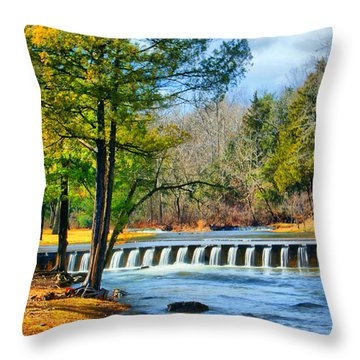 Throw Pillow featuring the photograph Rolling Down The River by Rick Friedle