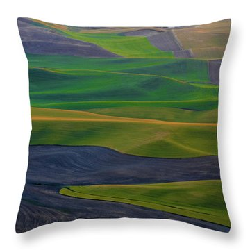 Rolling Fields Of The Palouse Throw Pillow by James Hammond