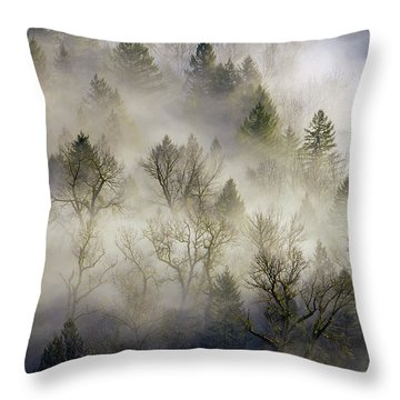 Rolling Fog In Sandy River Valley Throw Pillow by David Gn