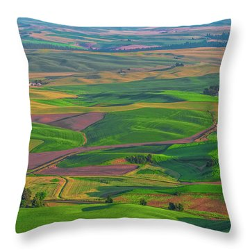 Rolling Green Hills Of The Palouse Throw Pillow by James Hammond