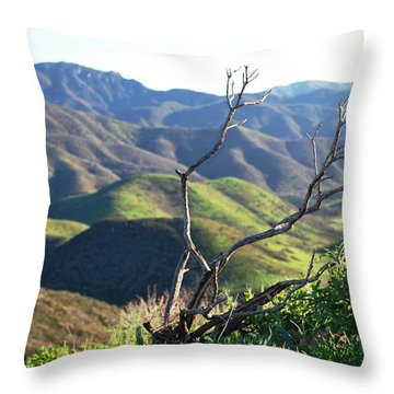 Throw Pillow featuring the photograph Rolling Green Hills With Dead Branches by Matt Harang