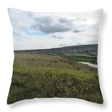Rolling Hill Throw Pillow